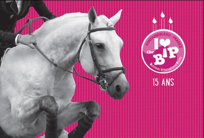 p1561-erfolgreiches-ponyturnier-in-fontainebleau-0.jpg